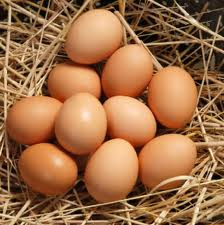 Eggs – Waste not, want not!