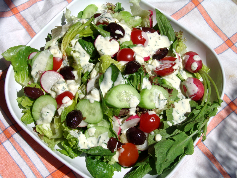 Mixed Green Salad with yogurt-cheese dressing